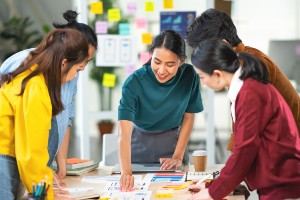 Application Software Developer in a team